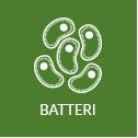 ic_batteri